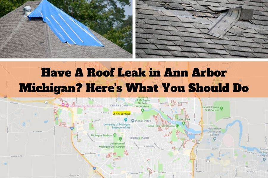 Have A Roof Leak in Ann Arbor Michigan? Here's What You Should Do