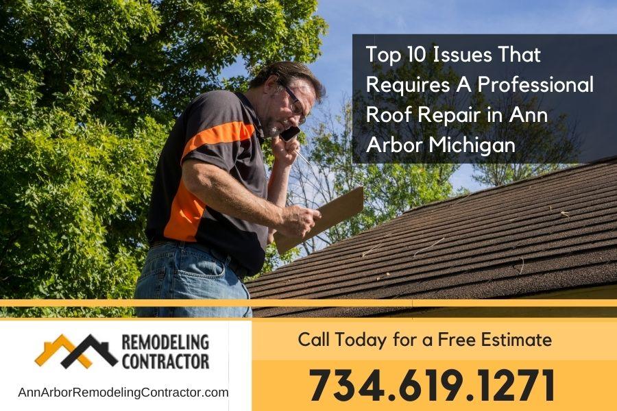 Roof Damage in Ann Arbor Mi (1)